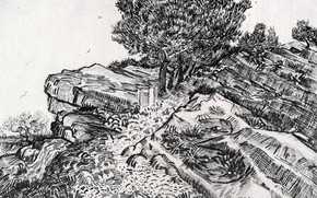 Картинка дерево, склон, Винсент ван Гог, Montmajour