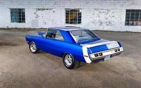 Картинка Muscle, Dodge, Blue, Coupe, Vehicle, Dart
