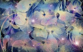 """Картинка абстракция, рисунок, картон, картинка, заставка на рабочий стол, цветочная фантазия, акриловые краски, фиолетовые оттенки, """"Светлячки …"""