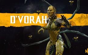 Картинка насекомые, боец, Смертельная Битва, Mortal Kombat, 2019, Mortal Kombat 11, D`Vorah, Ди`Вора