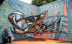 Картинка стены, граффити, аллигатор