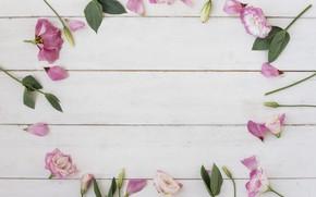 Картинка Pink, розовые, бутоны, wood, flowers, leaves, эустома