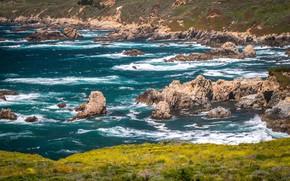 Картинка море, трава, солнце, камни, побережье, Калифорния, прибой, США
