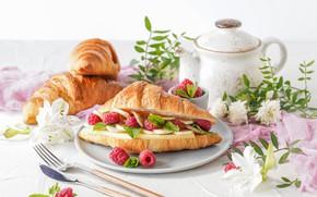 Картинка ягоды, малина, завтрак, сыр, Круассан