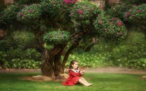 Картинка трава, природа, дерево, девочка, цветение, лужайка, ребёнок, Анастасия Бармина, Бармина Анастасия