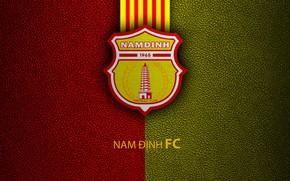 Картинка wallpaper, sport, logo, football, Nam Dinh