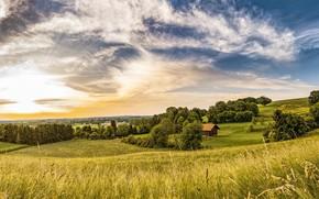 Картинка зелень, поле, лето, небо, трава, солнце, облака, деревья, пейзаж, уют, синева, холмы, поля, даль, склон, …