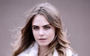 Картинка взгляд, поза, модель, актриса, hair, Cara Delevingne, Кара Делевинь