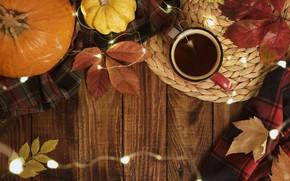 Картинка осень, листья, фон, доски, colorful, тыква, клен, wood, background, autumn, leaves, cup, осенние, tea, pumpkin, …