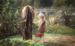 Картинка лошадь, девочка, рябина