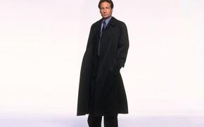 Картинка сериал, The X-Files, Дэвид Духовны, Секретные материалы, Фокс Малдер