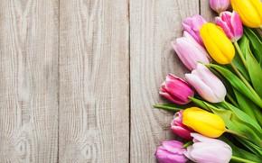 Картинка colorful, тюльпаны, розовые, yellow, wood, pink, flowers, tulips