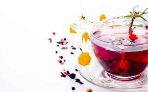 Картинка чай, ромашки, чашка