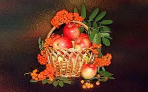 Картинка настроение, яблоки, натюрморт, корзинка, рябина, авторское фото Елена Аникина