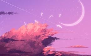 Картинка небо, птицы, полумесяц