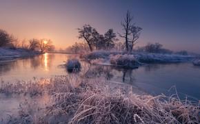 Картинка иней, осень, деревья, река, восход, рассвет, утро, Robert Kropacz