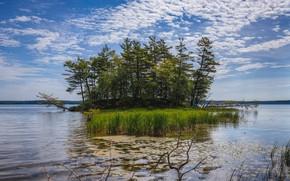 Картинка небо, облака, деревья, природа, озеро, остров