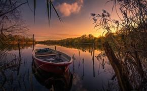 Картинка осень, трава, пейзаж, закат, природа, озеро, лодка, коряга, леса