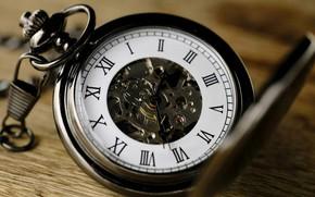 Картинка Mechanism, Roman numerals, Pocket watch