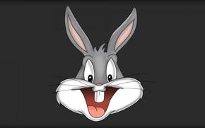 Картинка Кролик, Мультфильм, Looney Tunes, Багз Банни, Bugs Bunny, Кролик Багз