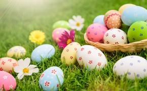 Картинка праздник, яйца, весна, пасха, корзинка