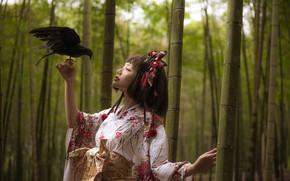 Картинка девушка, стиль, ворона, восточная