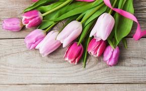 Картинка тюльпаны, розовые, pink, flowers, tulips