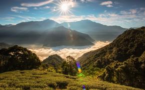 Картинка солнце, облака, лучи, горы, туман, холмы, растительность, склоны, Таиланд, дымка