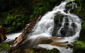 Картинка деревья, скалы, водопад, поток