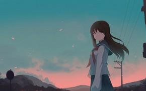 Картинка девушка, вечер, синее небо
