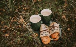 Картинка nature, food, coffee, picnic, rest, sandwich