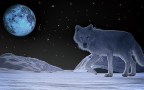 Картинка ночь, луна, волк