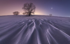 Картинка зима, звезды, снег, дерево, Луна, moon, winter, snow, stars, tree, Juan López Ruiz