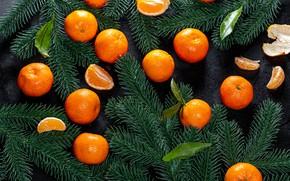 Картинка Рождество, Новый год, дольки, мандарины, еловые ветки