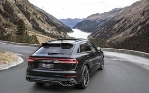 Картинка горы, Audi, TDI, вид сзади, кроссовер, ABT, 2019, SQ8