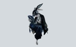 Картинка минимализм, кролик, маска, веер, парень, ушки