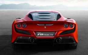 Картинка Ferrari, суперкар, вид сзади, 2019, Tributo, Ferrari F8
