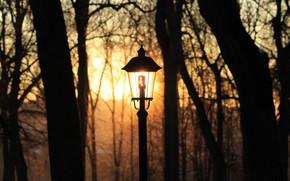 Картинка зима, лампочка, солнце, закат, парк, освещение, фонарь, калуга