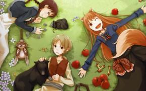 Картинка улыбка, яблоки, огрызок, маска, хвост, рыжая, монеты, цветочки, ушки, art, подруги, на траве, Spice and …