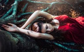 Картинка лес, солнце, природа, корни, поза, дерево, макияж, платье, прическа, лежит, шатенка, красивая, в красном, боке, …