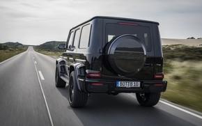 Картинка чёрный, Mercedes-Benz, внедорожник, сзади, Brabus, AMG, G-Class, G63, G 63, 2019, W464, Black Ops 800