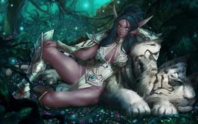 Картинка Рисунок, Тигр, Эльф, Арт, Питомец, Night Elf, World of WarCraft, WarCraft, Illustration, Blizzard Entertainment, Characters, ...