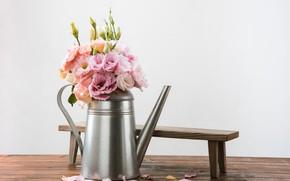 Картинка цветы, букет, лавочка, лейка, Эустома
