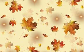Картинка golden, autumn, leaves, stars, season, fallen