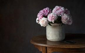 Картинка цветы, стол, горшок