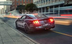 Картинка фары, Mustang, Ford, вид сзади, Bullitt, 2019