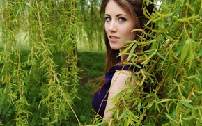 Картинка girl, sexy, blouse, long hair, blue eyes, beautiful, model, pretty, garden, face, brunette, attractive, handsome