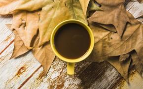 Обои осень, листья, фон, дерево, кофе, colorful, чашка, wood, background, autumn, leaves, cup, coffee, осенние, maple