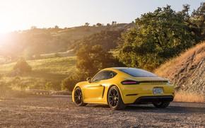 Картинка Porsche, Cayman, вид сзади, GTS, 718, 2019