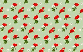 Картинка цветы, фон, маки, текстура